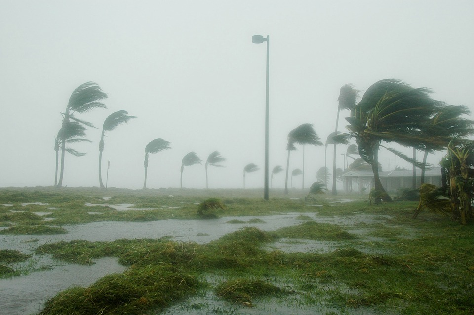 """Hurricane Prep (& Aftermath) In A Theme Park Town (& a visit from Kristen Bell/Frozen's """"Anna!"""")"""