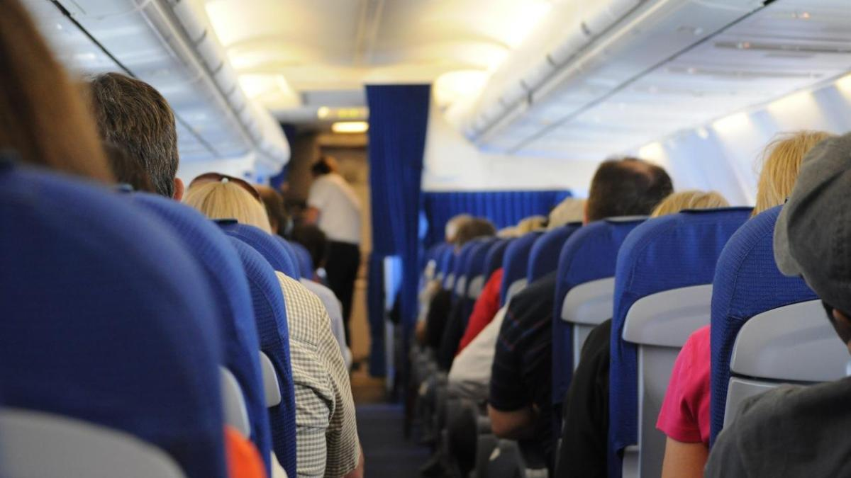 Some Bizarre Reasons For Planes That Have Made EmergencyLandings
