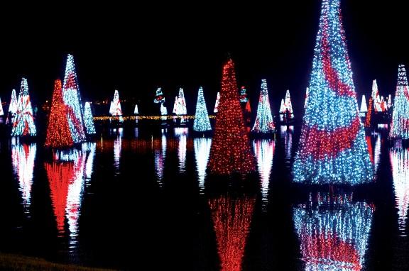 Hi-Res-SW_12_Christmas_7