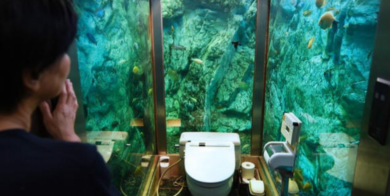 Exploring The Wacky Toilets of Japan, All In OnePlace!